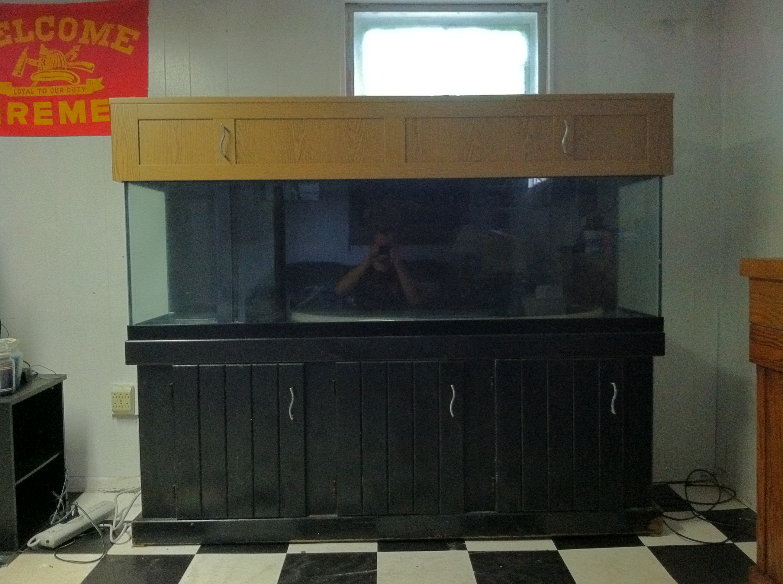 Related Pictures 125 gallon freshwater in wall aquarium