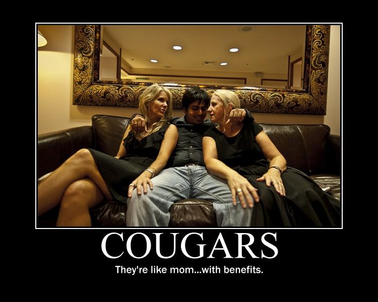 35c5640d_cougars