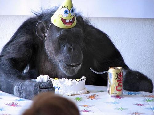 Как делать открытки на день рождения маКак